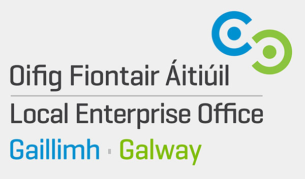 Logo for local Eneterprise Office, Galway