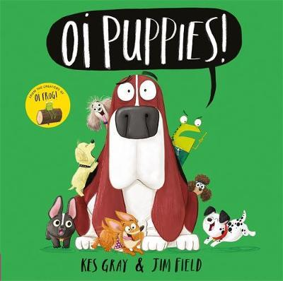 Kes Gray | Oi Puppies! | 9781444937367 | Daunt Books