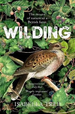 Isabella Tree | Wilding: The Return of Nature to a British Farm | 9781509805105 | Daunt Books
