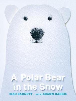 A Polar Bear in the Snow | Mac Barnett | Charlie Byrne's