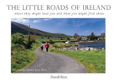 David Rice | The Little Roads of Ireland | 9781912514588 | Daunt Books