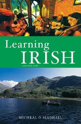 Micheál Ó Siadhail | Learning Irish | 9780300236675 | Daunt Books