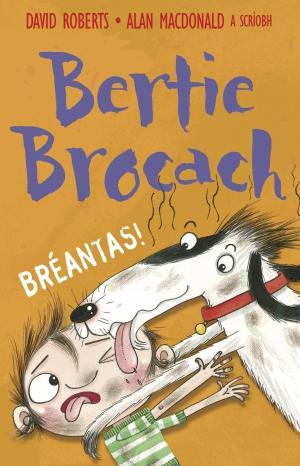 Bertie Brogach – Bréantas | David Roberts | Charlie Byrne's