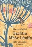 Eachtra Mhór Lúidín | Martin Waddell | Charlie Byrne's
