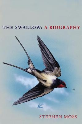 The Swallow: A Biography | Stephen Moss | Charlie Byrne's